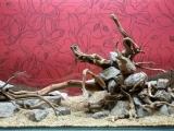 UDeco-Desert-Driftwood-2