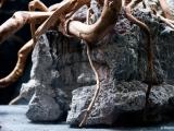 UDeco-Elephant-Stone-Desert-Driftwood-layout05