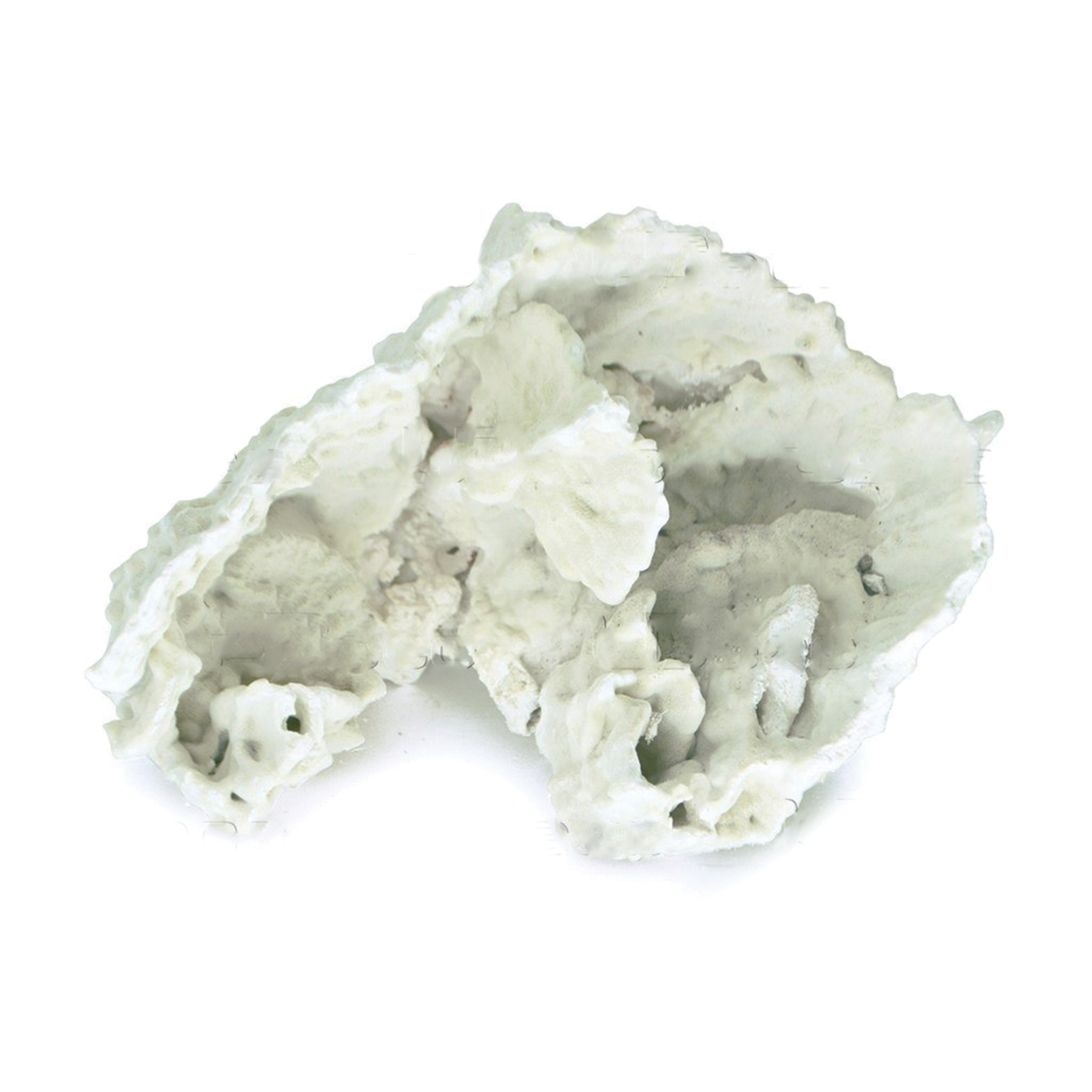 UDeco Slab Coral