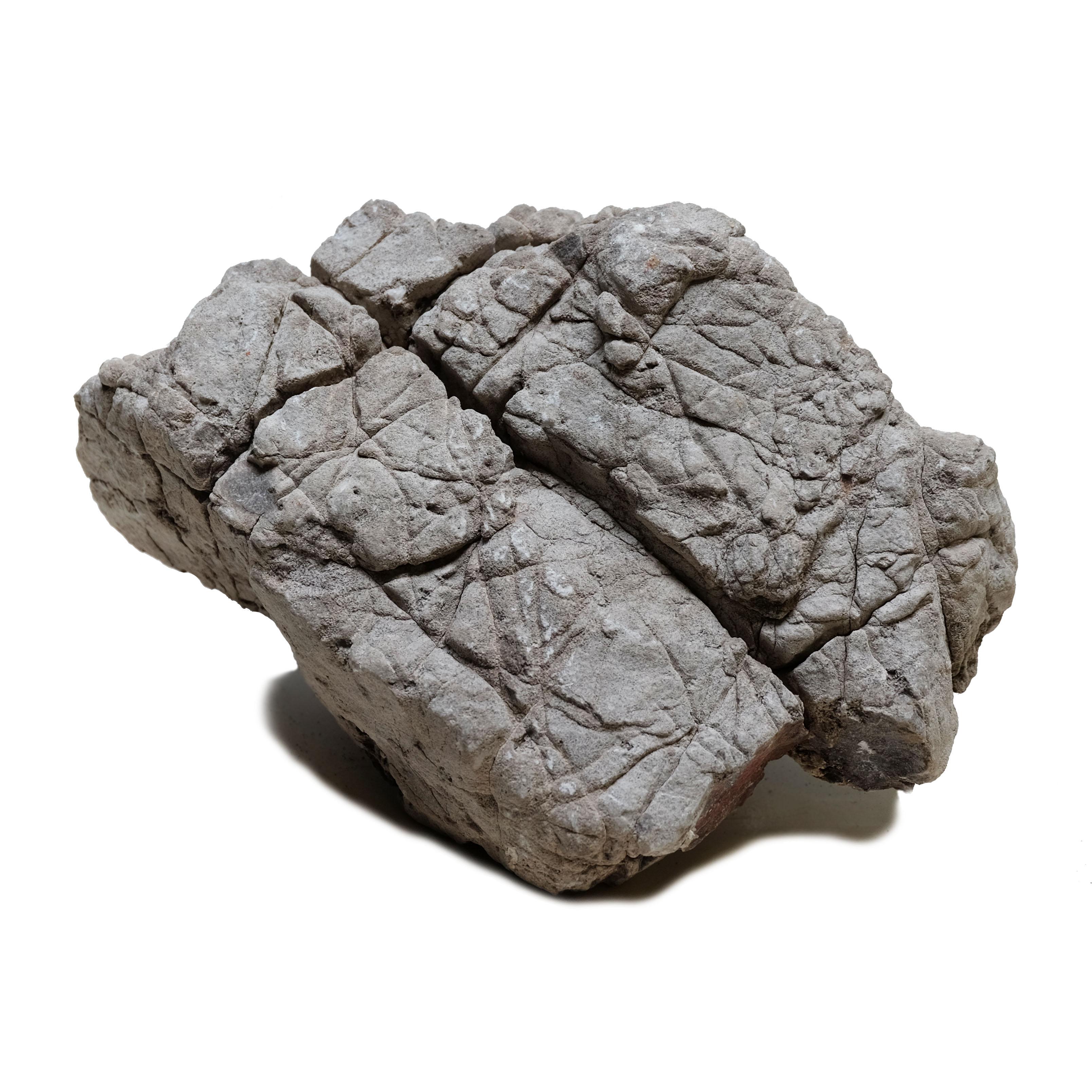 UDeco Elephant Stone