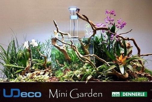 Оформление мини-сада с аквариумом
