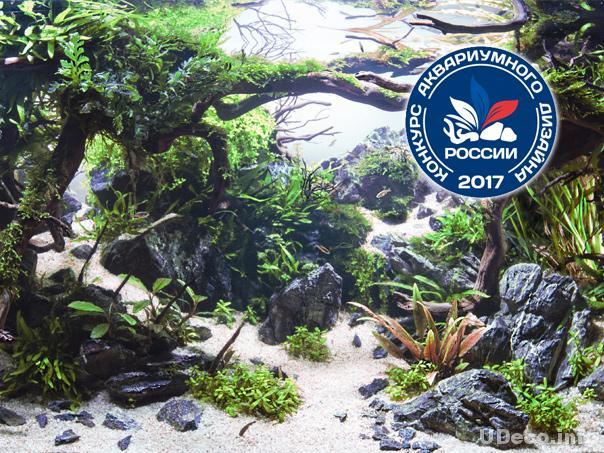 Конкурс аквариумного дизайна России 2017